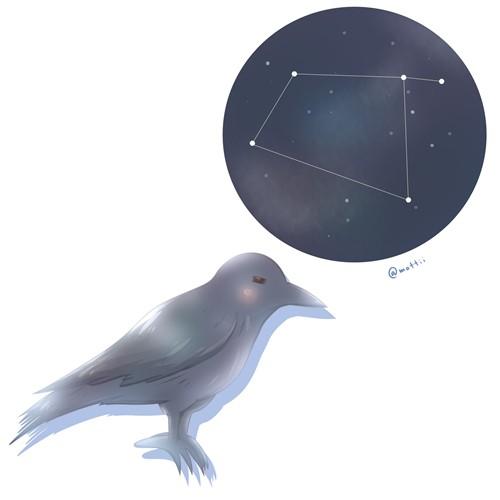 からす座(Corvus)