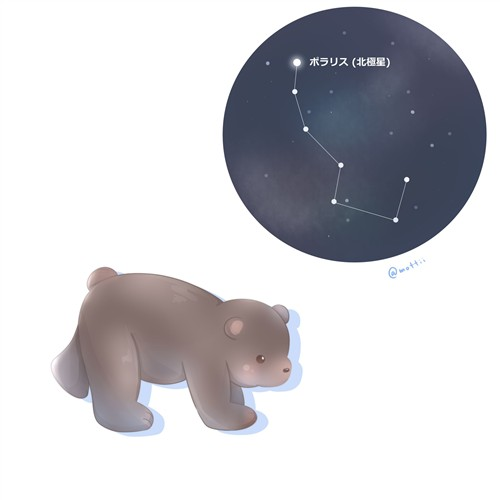 こぐま座(Ursa Minor)