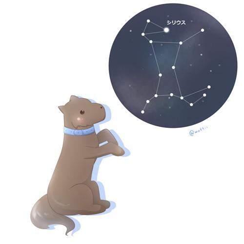 おおいぬ座(Canis Major)