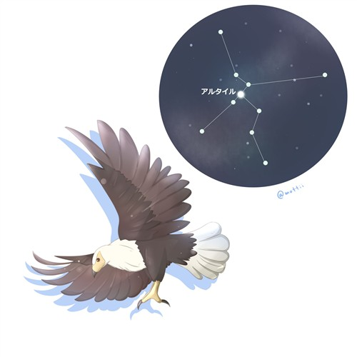 わし座(Aquila)