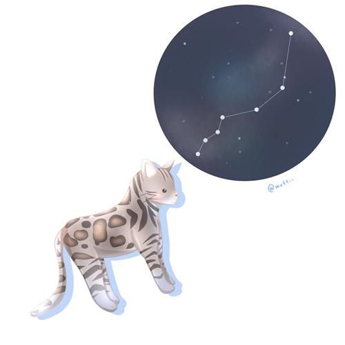 やまねこ座(Lynx)